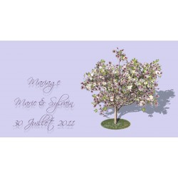 étiquette dragées magnolia