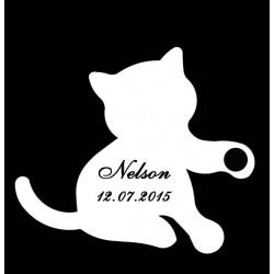 étiquette dragées chaton blanc